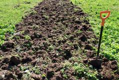 Мама решила устроить всем настоящий День Труда, когда объявила, что мы всей семьей едем копать огород.
