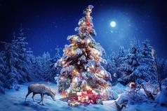 Новый год – это праздник, когда твое чувство прекрасного обостряется до такой степени, что начинают происходить чудеса.