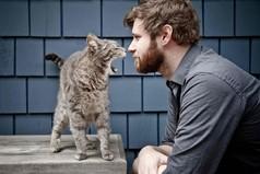 Только мужчины и коты с рождения, на генетическом уровне обладают умением с жутко деловым видом лежать на диване!