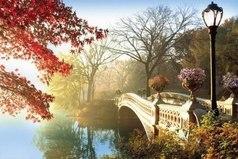 Самое непростое в жизни - понять какой мост следует перейти, а какой - сжечь.
