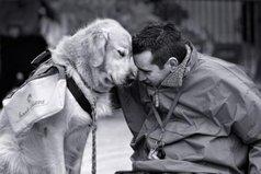 Доброму человеку бывает стыдно даже перед собакой.