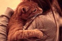 Кажется, единственный, кто понимает что у меня внутри — это мой кот. Когда я беру его на руки, он так смотрит, как будто всё-всё понял.