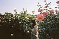 Когда ищешь вдохновения, для чего либо, достаточно бывает просто влюбиться. И это чувство либо убьет тебя, разорвав на куски, либо вознесет.