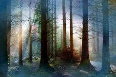 Красота мира, начинается с красоты твоей души.