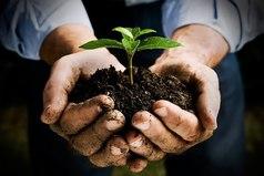 Ждать успеха без усердной работы равносильно тому, чтобы ждать урожая, если ничего не было посеяно.