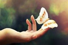Пусть у тебя будет сердце, которое никогда не ожесточится, и характер, который никогда не испортится, и прикосновение, которое никогда не ранит.