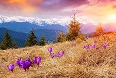 Живи так, как будто ты сейчас должен проститься с жизнью, как будто время, оставленное тебе, есть неожиданный подарок...