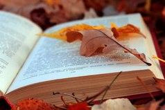 Сколько бы лет тебе не исполнилось, нет ничего лучше хорошей книги в руках...
