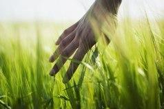 Пока ты стоишь лицом к своему прошлому, ты стоишь жопой к своему будущему!