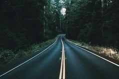 Иногда свернуть не туда единственный способ попасть куда нужно.