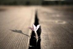 Позволь себе дышать полной грудью и не загоняй себя в рамки. Сила у того, кто верит в свою силу.