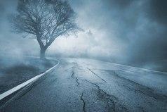 Не смотри в прошлое с тоской. Оно не вернется. Мудро распорядись настоящим. Оно твое. Иди вперед, навстречу туманному будущему, без страха и с мужественным сердцем.