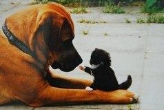 Забывайте обиды, никогда не забывайте доброту.