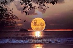 Чтобы придать очертания большой мечте, нужны пространство и тишина...
