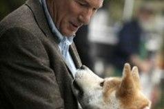 Не бросайте животных... прошу вас, они самые преданные и любят вас независимо от того, кто вы и сколько у вас денег.