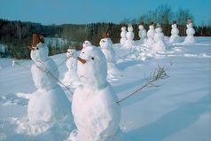 Слепить снеговика в Колумбии обойдется примерно в 3 мл-на долларов