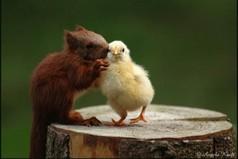 Самое трудное в дружбе - быть вровень с тем, кто ниже тебя...если ты в силах оказать другому любую услугу, взвесь прежде, по плечу ли она ему.