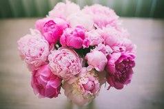 - Какие твои любимые цветы?  - Те, которые мне подарил любимый.