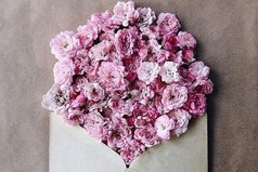 Используйте каждый свой день для приумножения любви и добра!!!
