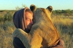 Львица обнимает человека, который спас её.