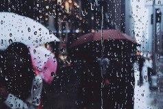 Как приятно сидеть дома, когда по крыше стучит дождь и когда знаешь, что в доме твоем нет тяжелых скучных людей.