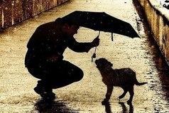 Ум богатеет от того, что он получает. Сердце - от того, что оно отдаёт.