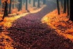 В каждом времени года есть своя прелесть. Главное - увидеть ее. Счастье не зависит ни от кого. Оно уже внутри тебя и зимой, и весной, и летом, и осенью.