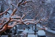 Холодный по погоде и самый тёплый для души декабрь. Все начинают готовить подарки, мечтать. Каждый ждёт чего-то особенного для себя, исполнение какого-либо желания в Новый Год...