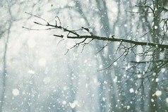 Зимой всегда хочется верить в сказку...