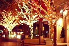 Я уже хочу зиму, идти по белому снегу, слушать любимую музыку и видеть эту всю новогоднюю суету.
