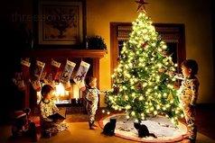 Новый год - такой прекрасный праздник: светлый, добрый, время когда происходят чудеса и сбываются мечты!!!