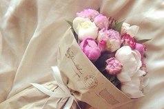 Я счастлива не потому что у меня все есть. Я счастлива, потому что люблю то, что имею.