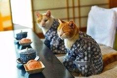 Жить надо по-японски: не торописса, не волновасса и улыбасса.