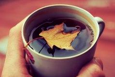 Время утепляться тёплыми свитерами, горячим чаем и добротой.