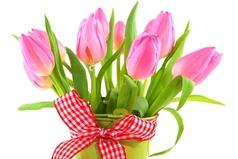 Те кто не допил 23 февраля допивайте 8 марта – это одно и тоже, по старому календарю.