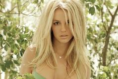 Блондинку достаточно легко заставить молчать. Достаточно сказать: думай вслух!