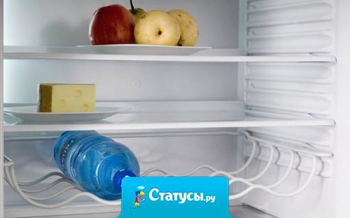 Пиццу обычно делают из того что найдут в холодильнике. Заглянула в свой, там: бутылка коньяка и лимон. Как-то настораживает меня эта Пицца!