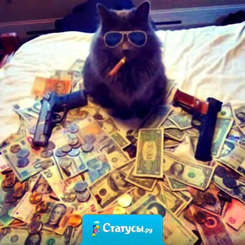 Понимаю, что деньги — зло, и всё равно, не могу я на них долго злиться. Видно, сердце у меня отходчивое.