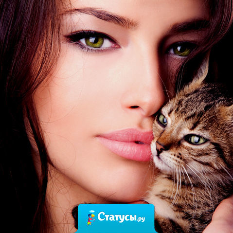 Мой кот постоянный свидетель моих секретов, неудач, пороков и многого другого. Иногда смотрю на него и думаю: «Не дай Бог заговорит!»