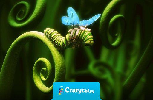 Нельзя приклеить к гусенице крылья и заставить  ее летать, как бабочку. Она должна измениться изнутри.