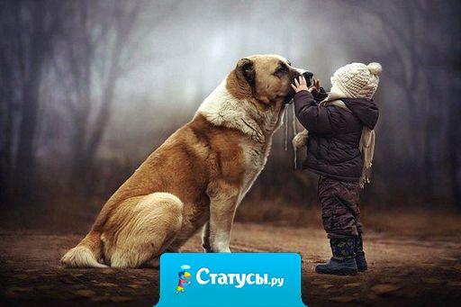 Друзьями остаются лишь те, кого с годами не съела зависть, кого не огорчило чужое счастье!