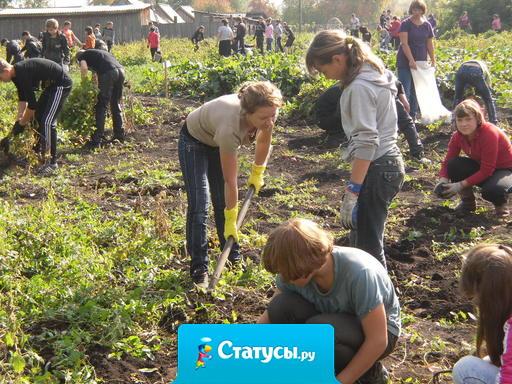Первомая ждет народ, чтоб вскопать свой огород.