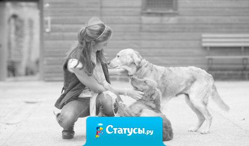 Если ты подберешь голодную собаку и сделаешь ее жизнь сытой, она никогда не укусит тебя. В этом принципиальная разница между собакой и человеком.