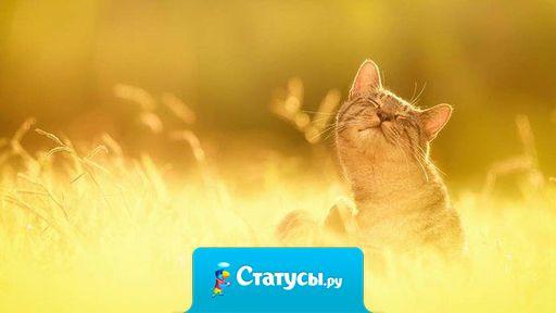 от, у кого в Душе светит Солнце, будет видеть Солнце даже в самый хмурый день.