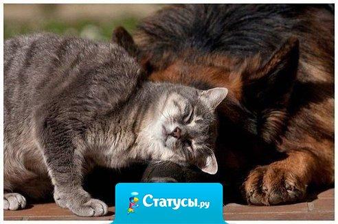 Нет такой ссоры, которая была бы важнее дружбы !!!