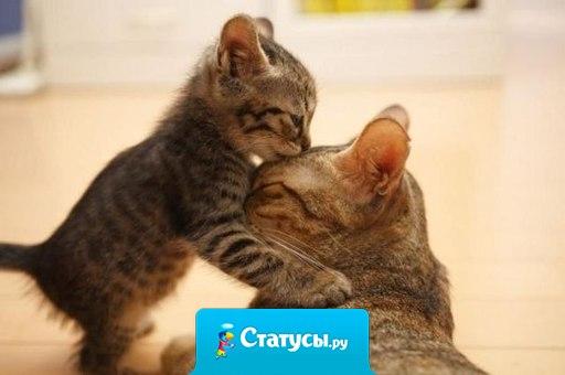 Любите свою маму! Она единственная!