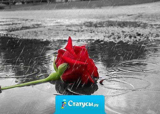 Если любовь задыхается - дышите... если прощается - прощайте... если она ушла - это была не она.