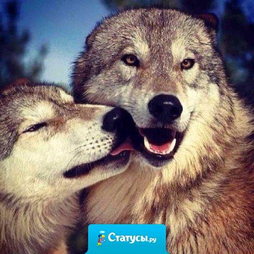 Не ссорься по пустякам, не обижайся на глупости.  Цени тех, кто рядом с тобой и дает повод улыбаться.