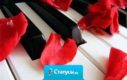 Жизнь — как фортепиано. Белые клавиши — это любовь и счастье, чёрные горе и печаль. Чтобы услышать настоящую музыку жизни, мы должны коснуться и тех, и тех