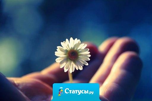 В ожидании чуда делай добрые дела. Тогда и чудо придет к тебе не с пустыми руками.